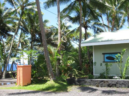 Whale House at Kehena Beach Photo