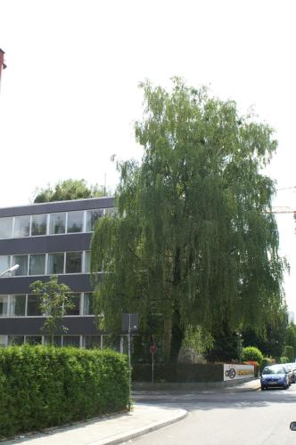 CREO Munich City photo 2