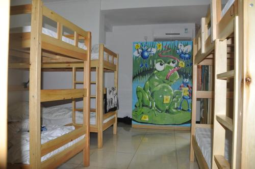Three Legged Frog Hostel photo 8