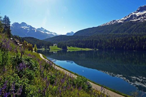 Waldhaus am See, St.Moritz, Switzerland, picture 10