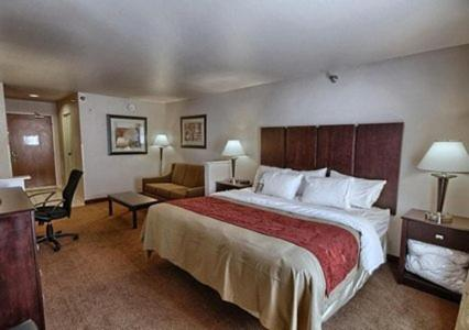 Comfort Inn & Suites Fenton Photo