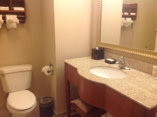 Hampton Inn Austin-South - I-35 & Ben White photo 16
