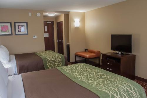 Comfort Inn & Suites Artesia Photo
