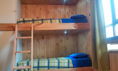 Hostal Pucon Sur Backpacker Photo