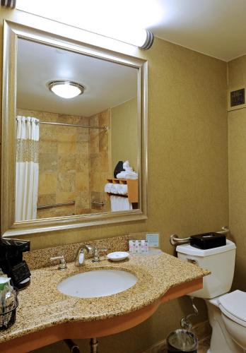 Hampton Inn & Suites Nashville-Vanderbilt-Elliston Place Photo