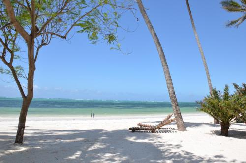 Indigo Beach Zanzibar Photo