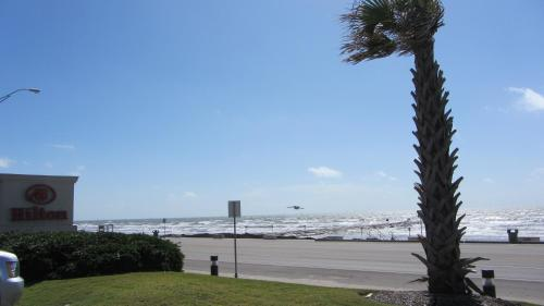 Hilton Galveston Island Resort Photo