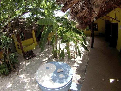 Hotel Big Fish Cozumel Dive Hostel