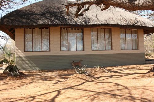 Tshukudu Game Lodge - Hoedspruit Photo