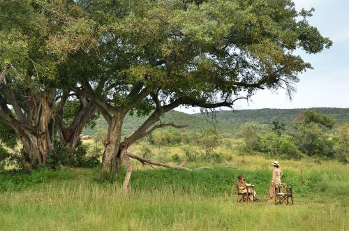 Makweti Safari Lodge Photo