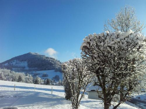 Oberstaufen photo 30