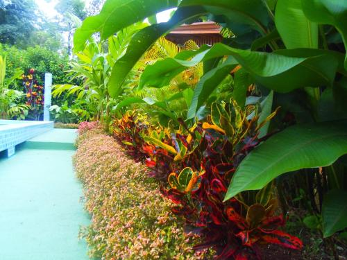 Heliconias Nature Lodge Photo