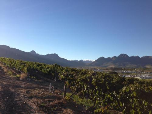 De Zalze Luxury Lodge Photo