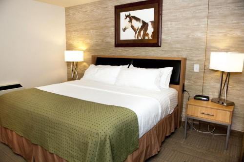Holiday Inn Spearfish-Convention Center Photo
