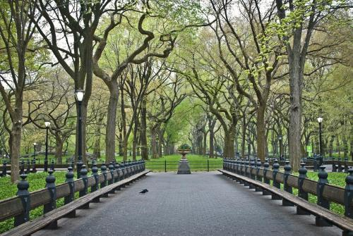 Hudson New York, Central Park Photo