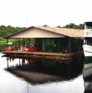 Manaus Jungle Hostel Photo