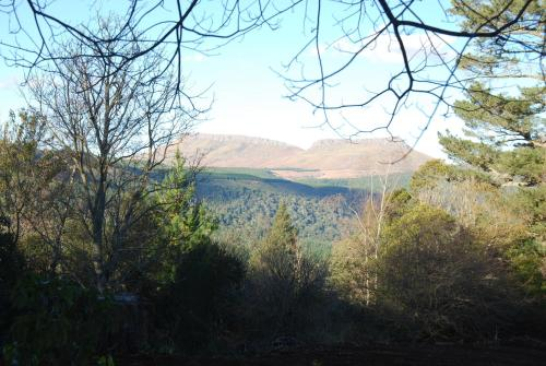 Laragh-on-Hogsback Photo