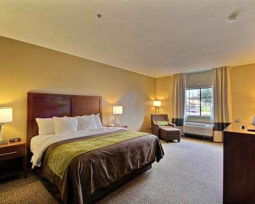 Comfort Inn Edinburg Photo