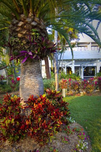 Hawks Cay Resort, Key West, USA, picture 35