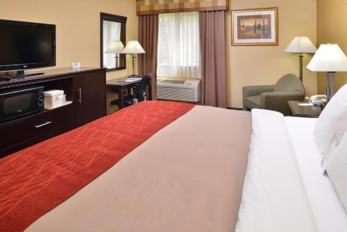 Comfort Inn Asheboro Photo
