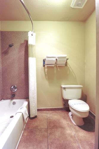 Rodeway Inn & Suites Flagstaff Photo
