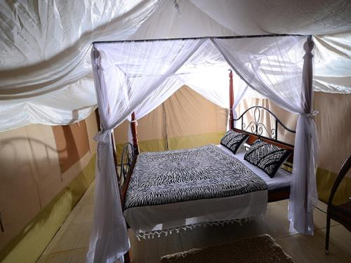 LITTLE OLERAI LUXURY TENTED CAMP0