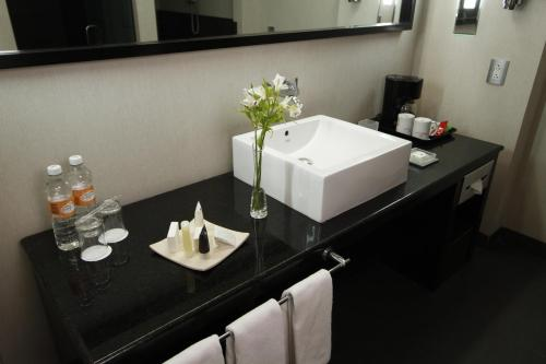 Crowne Plaza Toluca - Lancaster photo 15
