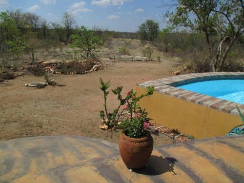 Silonque Bush Estate and Spa Photo