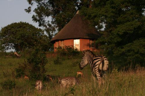 Mlilwane Wildlife Sanctuary, Lobamba