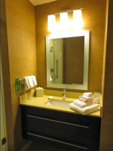 TownePlace Suites by Marriott San Antonio Downtown Photo