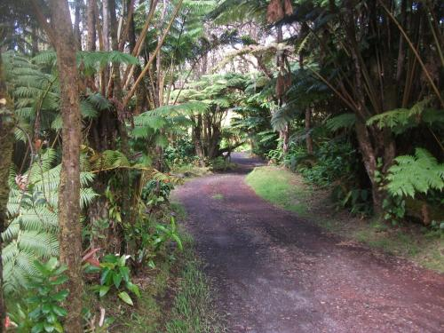 Aloha Crater Lodge and Lava Tube Tours Photo