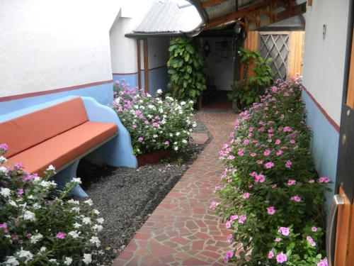 Hostal Baltra (Galapagos Apart and Suites) Photo