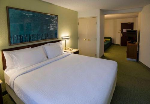 Springhill Suites By Marriott Bolingbrook - Bolingbrook, IL 60440