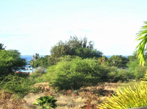 Mauibabbe's HideAway at the Maui Banyan Resort Photo