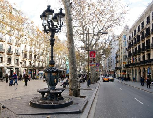 Royal Ramblas photo 37