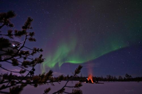 The Forest Hotel, Lulea Swedish Lapland, Sweden, picture 1