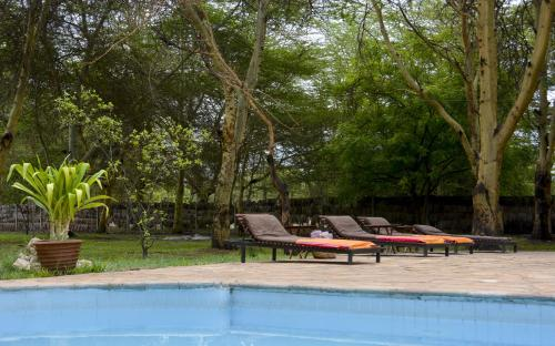 Nsya Lodge & Camp, Mto wa Mbu