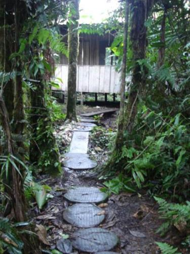 Rara Avis Rainforest Lodge Photo