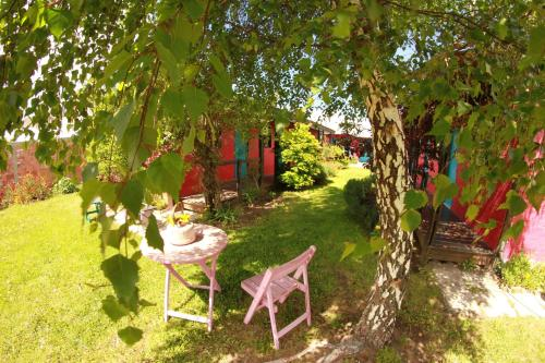 Albergue Lago Argentino B&B Photo