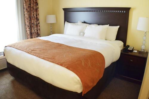 Comfort Suites Southington - Cheshire - Plantsville, CT 06489