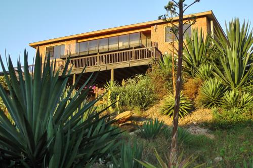 Starfish Surf House Photo