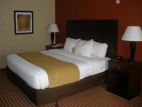 Comfort Inn & Suites Dayville Photo