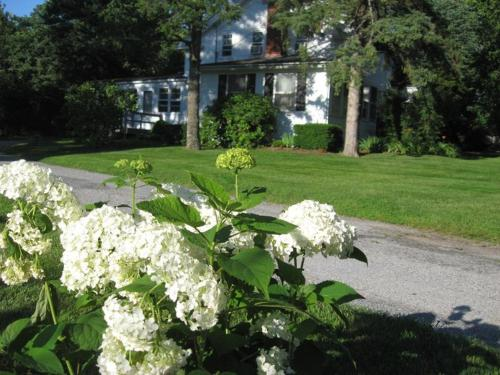 Historic White Blossom House Photo