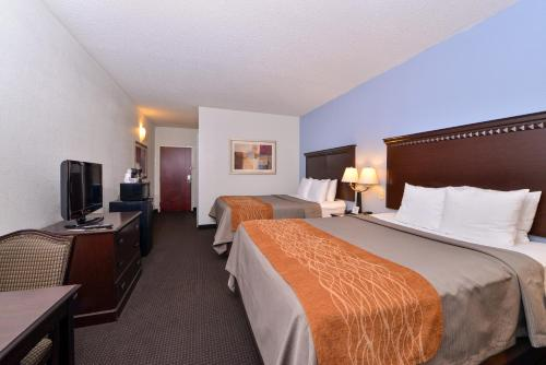 Comfort Inn Lumberton Photo