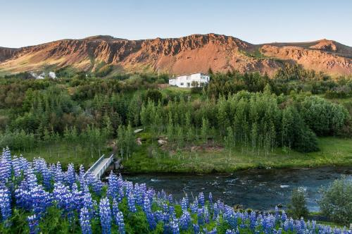 Iceland's Guesthouse, Кверагерди