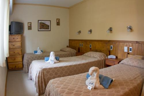 Hotel Teomar Photo