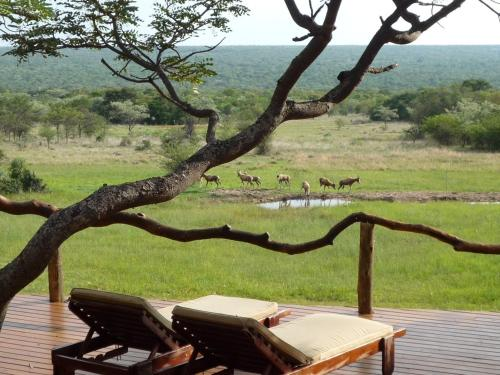 Zangarna Game Lodge Photo
