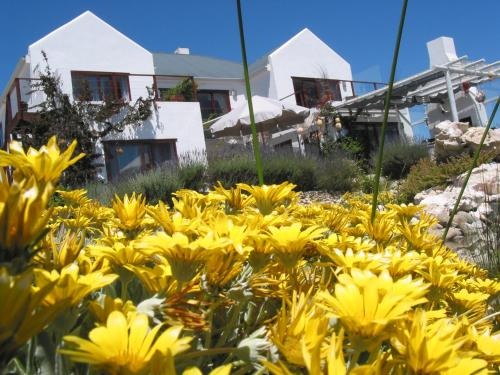 Farr Out Guest House Photo