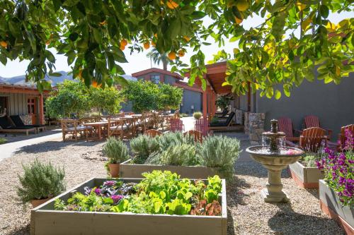 Sparrows Lodge , Palm Springs, USA, picture 29