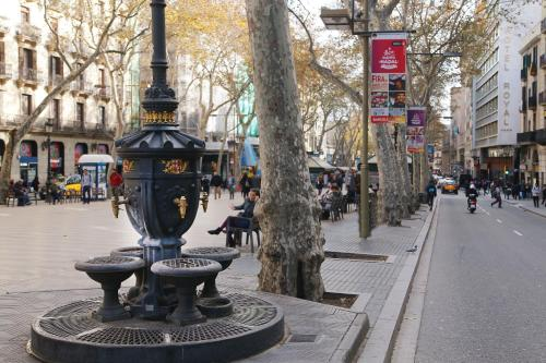 Royal Ramblas photo 45
